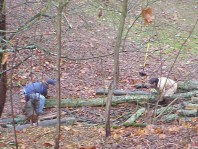 Moving and installing woody debris and terracing material.