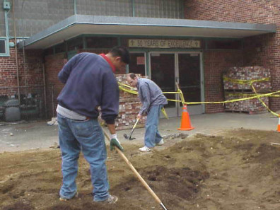 Filling in the big bed with soil and reshaping the planting mounds.