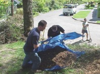 Running the mulch down the slope and dumping it in place.