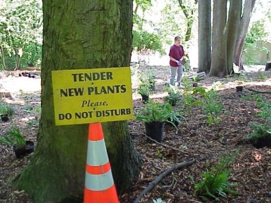A sign notifying visitors of the new plants.
