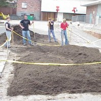 Building raised planting mounds in the big bed.