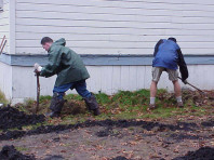 Removing weeds to prepare the site for a planting mound.