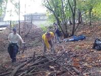 Selecting woody debris to create terraces.