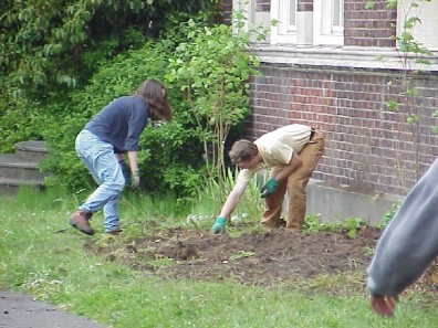 Installing and mulching plants.