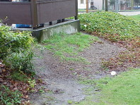 The beds around the bus stop prior to renovation.