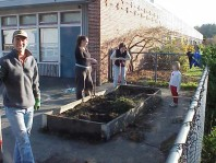 Cleaning up the raised beds in preparation for new plantings.