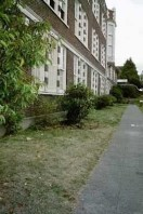 The planting bed along the school prior to renovation.