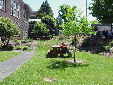 The Evolution Garden one year after renovation.