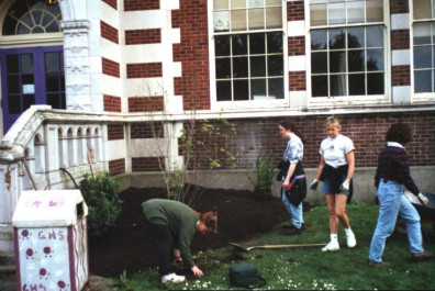 Installation of Acer circinatum (May 20, 1999).