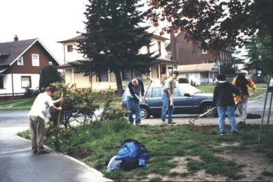 Weed removal and soil preparation (May 6, 1999).