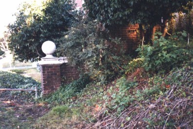 The Herb Garden site prior to rehabilitation.