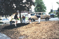 Creating soil islands for planting (May 20, 1999).