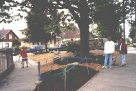 The finished triangle: ground view (May 1999)