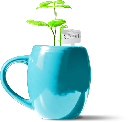"Plant in coffee cup with a tag that reads ""Support"""