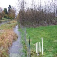 Clarks Creek Buffer Site