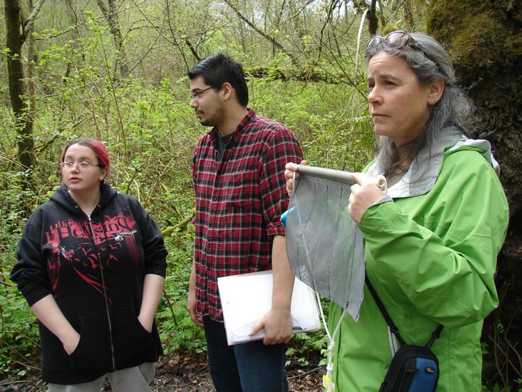 Volunteers in Stream Monitoring Program