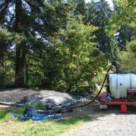 Soil disinfestation with steam.