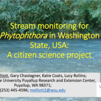 Stream monitoring Presentation Cover