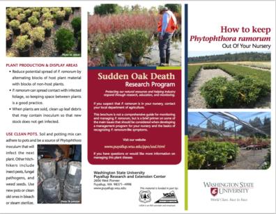 WSU Sudden Oak Death Nursery Management Brochure