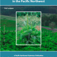 Developing Quality Christmas Trees in the Pacific Northwest