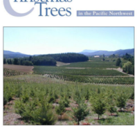 Growing Christmas Trees in the Pacific Northwest