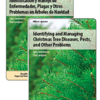 Identifying and Managing Christmas Tree Problems