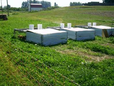 Pastured poultry, moveable day pens