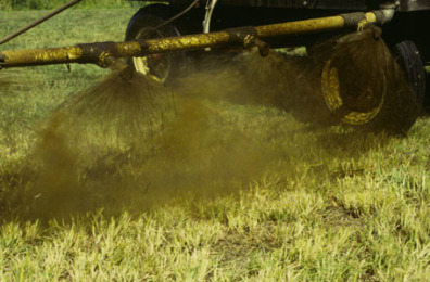 Supercow Liquid Manure Applicator spraying research forage plots.