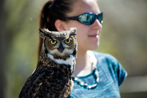 Raptor Club student and owl