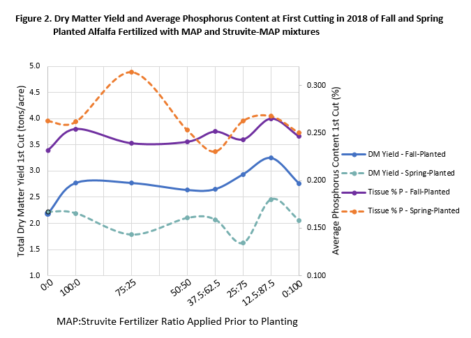 Line graph showing Total Dry Matter Yield 1st Cut (tons/acre) vs. MAP: Struvite Fertilizer Ratio Applied Prior to Planting for Fall- and Spring-Planted Alfalfa