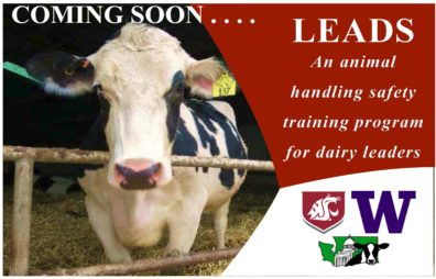 Coming Soon: LEADS. An animal handling safety training program for dairy leaders.