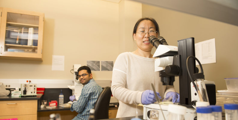 Jingru Sun in lab