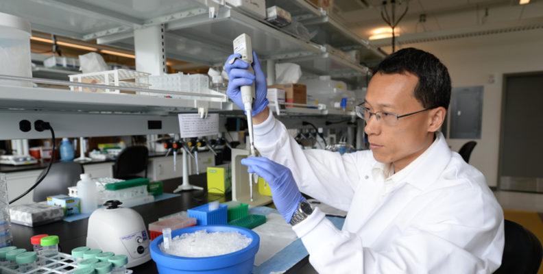 Researcher David Liu in his lab on the WSU Spokane campus