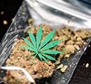 Image of marijuana in a small bag