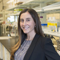 Lucia Peixoto in her lab on the WSU Health Sciences Spokane campus