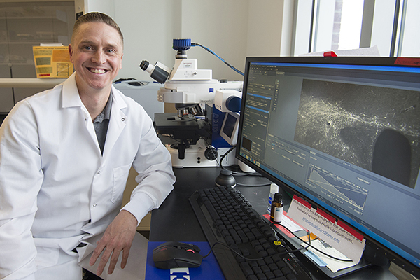 Willie Vanderheyden uses fluorescent microscopy to identify sleep promoting cells in the dorsal part of a rat brain.