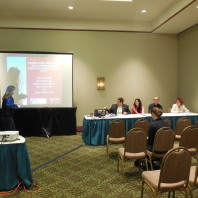 Faith Lutze presenting a paper at a panel.
