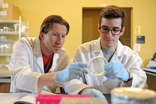 Goldwater 2018 winner Zachary Howard works with undergraduate research mentor Anders Omsland in the lab