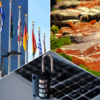 United nations, fish market, and a computer lock representing the 2019-2021 common reading theme of global stability, scarcity, and security.