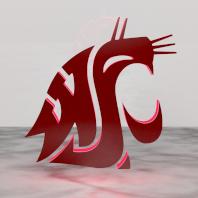 The official WSU logo.