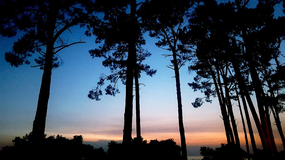 A sunset view from the Rizoma Field School in Colonia, Uruguay.