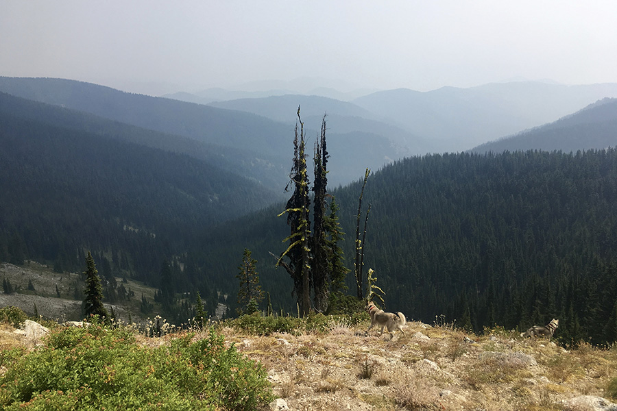View of Nez Perce tribal lands of north-central Idaho