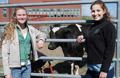 inaugural global animal health certificate recipients
