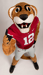 Butch T. Cougar