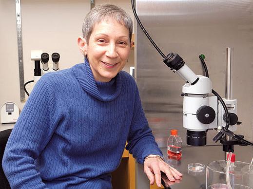 Patricia Hunt WSU geneticist BPA expert