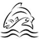 salmon-creek-journal-logo-80