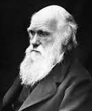 Charles Darwin logic doesn't pan out