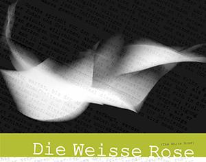 White-Rose-banner-300