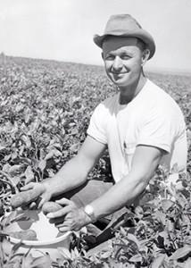Bud-historic-potato-field-250