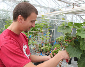 WSU-viticulture-and-enology-student-400